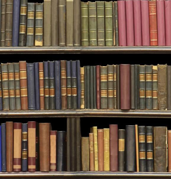 Portada de As bibliotecas galegas
