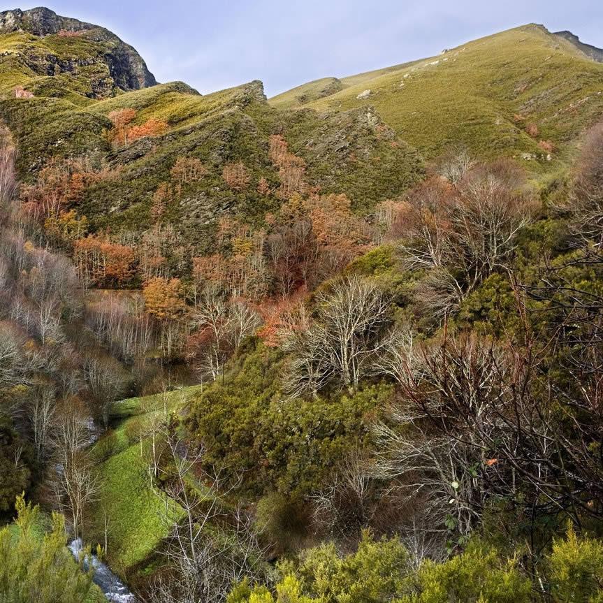 Montes, territorio e paisaxe