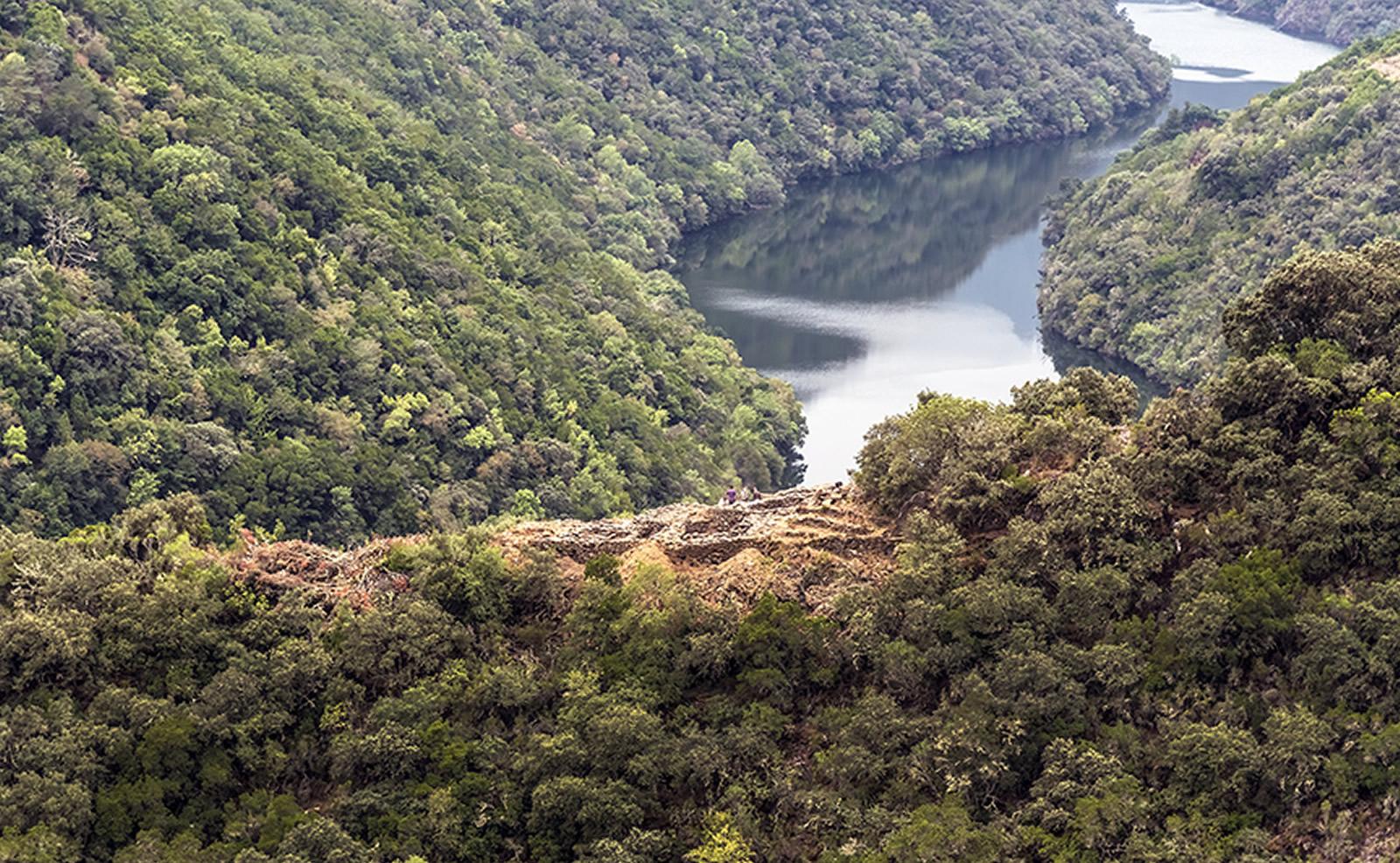 A construción da paisaxe galega entre a Tardoantigüidade e a Idade Media: socalcos, campesiñado e cristianismo