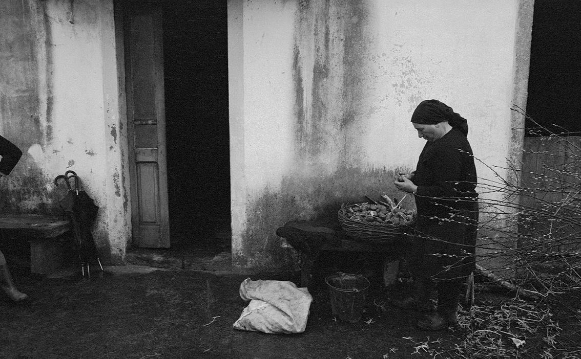 Mulleres rurais. Unha ollada desde Galicia e  América Latina