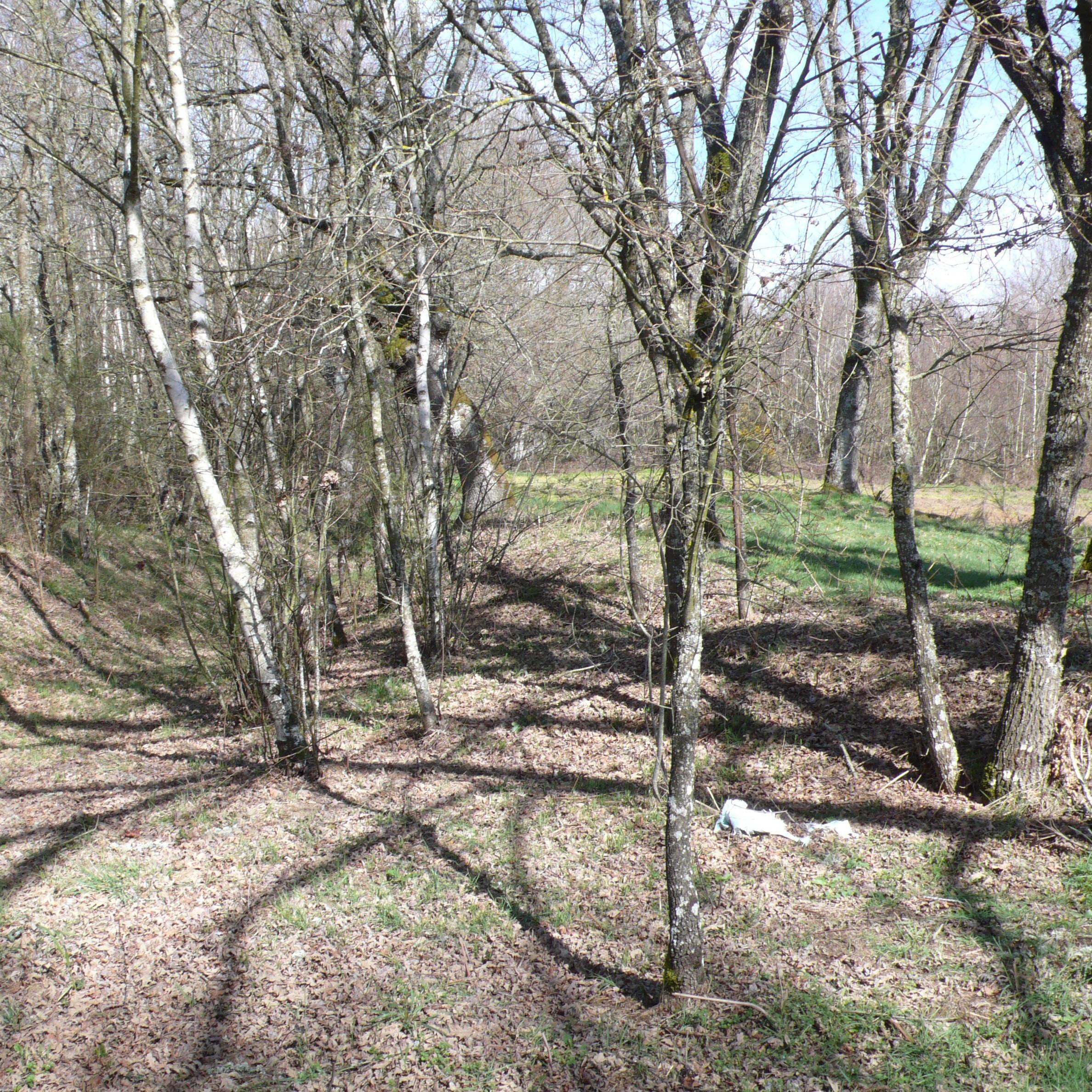 O estado actual das vías romanas en Galicia e a necesidade dunha maior protección