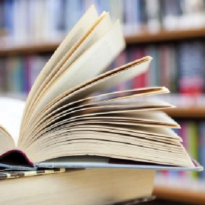 O ensino da literatura a debate. Os currícula escolares nos novos plans de estudos